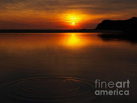 Ring In Water by Trena Mara