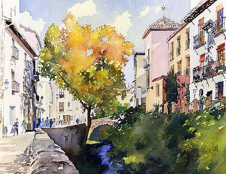 Rio Darro Granada by Margaret Merry