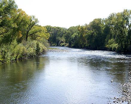 Rio Grande River, CO by D Winston