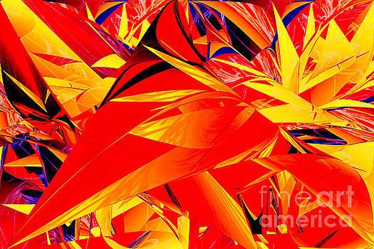Riot of Leaves by Geraldine DeBoer