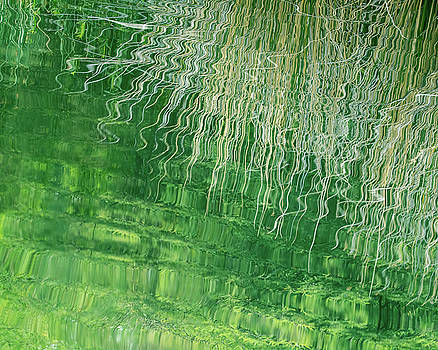 Riparian Abstract by Tam Ryan