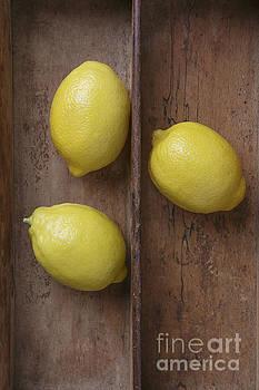 Edward Fielding - Ripe Lemons in Wooden Tray