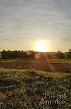 Maria Urso - Rise of the Morning Sun