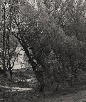 River Bank by Zeljko Dozet