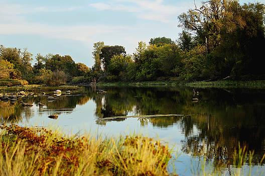River Bypass by Pamela Patch