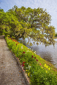 River Path 1 by Steven Ainsworth