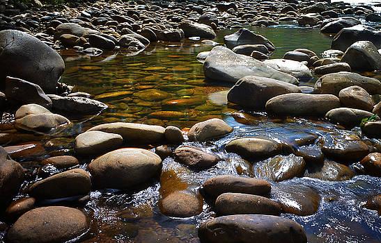 River Rocks by Lj Lambert