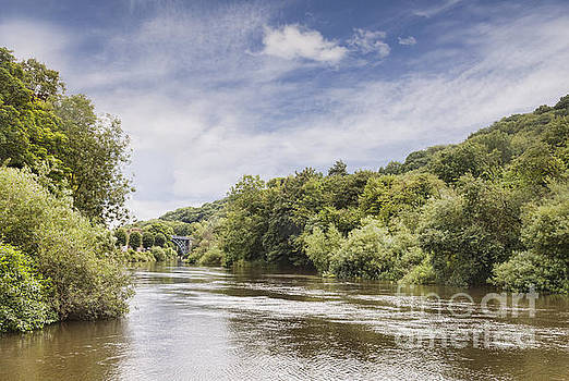 River Severn in Summer by Colin and Linda McKie