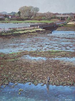 River Test at Totton Southampton by Martin Davey