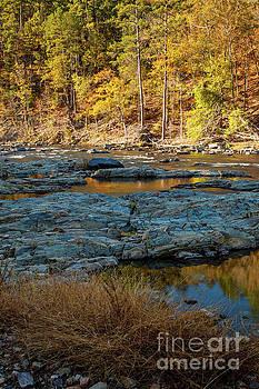 RiverSide by Iris Greenwell
