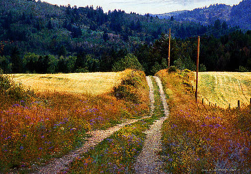 Road Above Cynthia's House by R christopher Vest