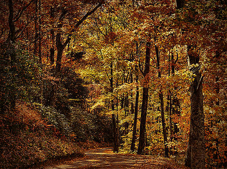 Dave Bosse - Road Into Fall