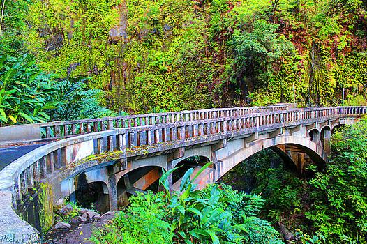 Road to Hana Bridge by Michael Rucker