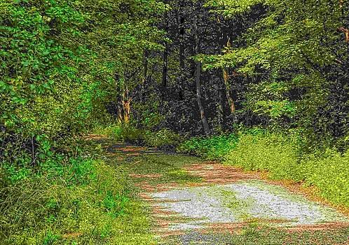 Road to Heaven by Michael Degenhardt