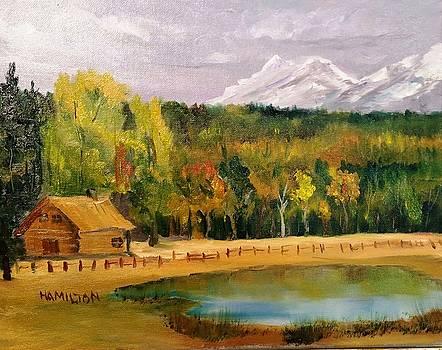 Road to Kintla Lake by Larry Hamilton