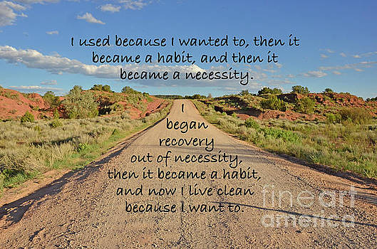 Road to Recovery by Debby Pueschel