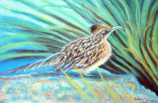 Roadrunner Fluffing Sold   Pastel by Antonia Citrino