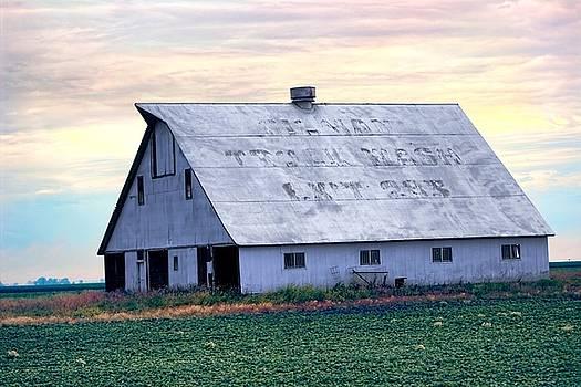 Roadside Barn - Gilman Illinois by Chrystyne Novack