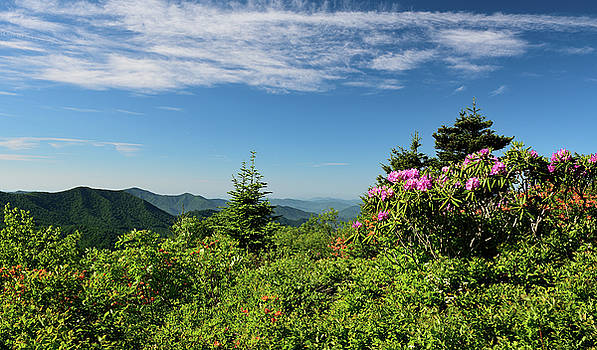 Roan Highlands by Jamie Pattison