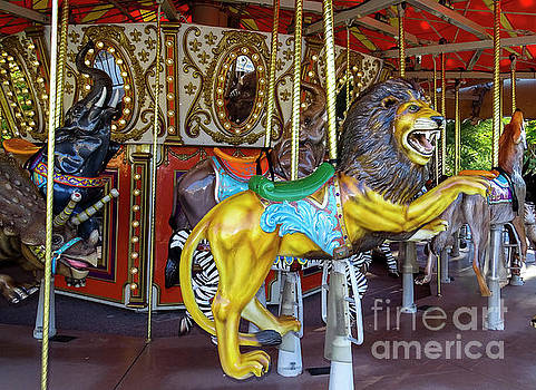 Roaring Fun Carousel by Deniece Platt