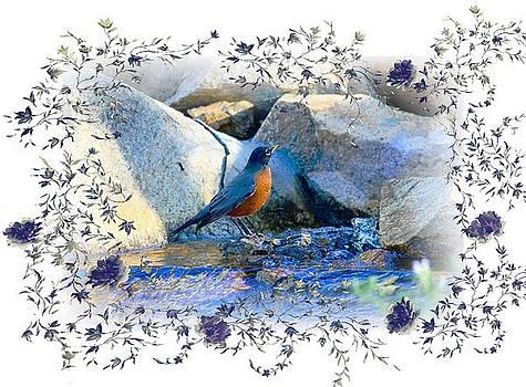 Robin by Athala Carole Bruckner