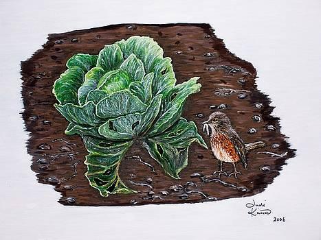 Robin in the Gardin by Judy Kirouac