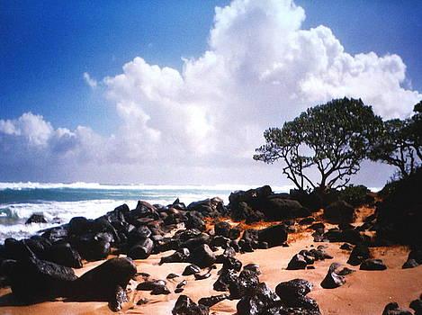 Diane Merkle - Rock and Sand