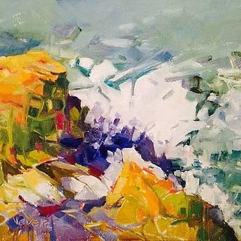 Rock falls by Trish Vevera