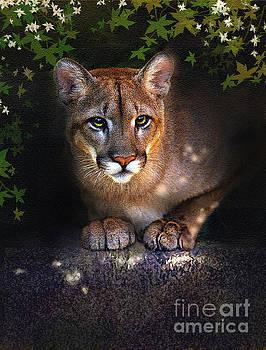 Rock Lion by Robert Foster