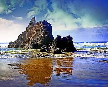 Marty Koch - Rock on Beach