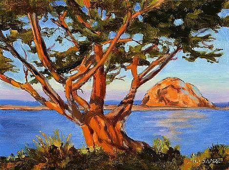 Rock Reflection - Morro Bay by Lynee Sapere