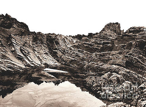 Rock - Sepia by Rebecca Harman