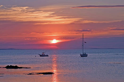 Sunset Sailing - Gloucester, Ma by Joann Vitali