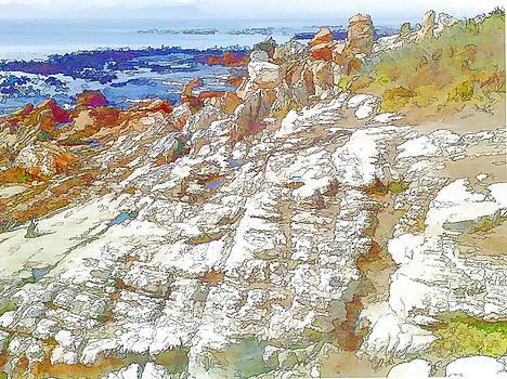Rocks and Sea by Jan Hattingh