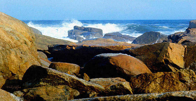 Rocks And Surf by Frank Wilson