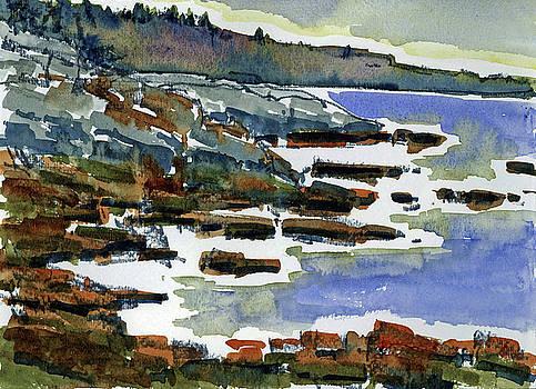 Rocks and Surf Marginal Way by Mary Byrom