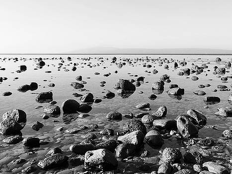 Dominic Piperata - Rocks at Low Tide
