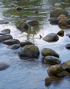 Patricia Taylor - Rocks in Blue Water