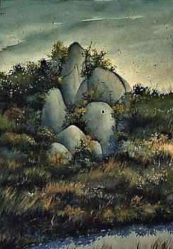 Rocks by Michael Ryan