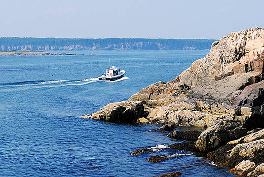 Rocky Coast Downeast by Steven Scott