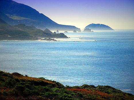Joyce Dickens - Rocky Creek Coastline