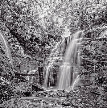 Rocky Falls - BW by Christopher Holmes
