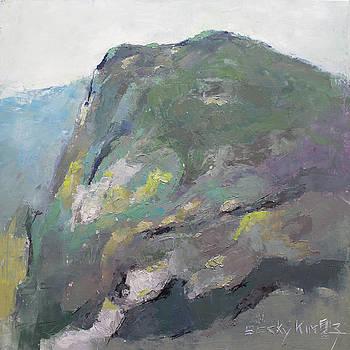 Rocky Mountain by Becky Kim