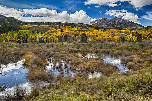 Rocky Mountain Kebler Autumn Rush by James BO  Insogna