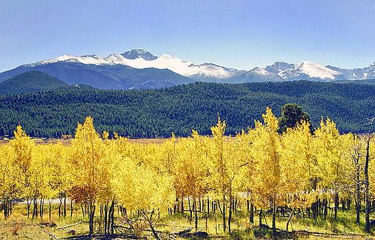 James Steele - Rocky Mountain Park Colorado