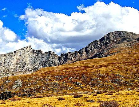 Rocky Mountain Ridgeline by Amy McDaniel