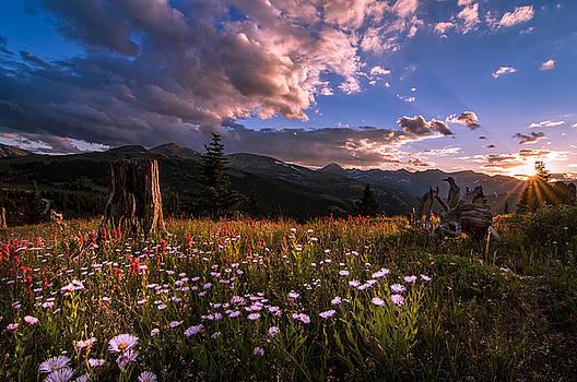 Rocky Mountain Summer Sunset by Michael J Bauer
