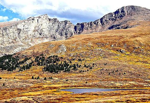 Rocky Mountain Tundra and Lake by Amy McDaniel