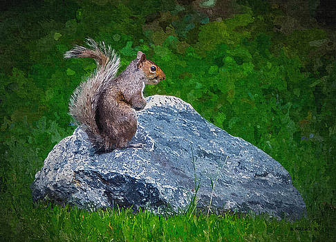 Rocky The Squirrel - Paint FX by Brian Wallace