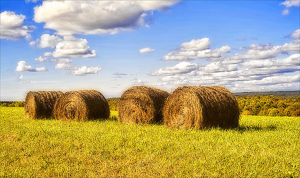 Roll Out The Hay by Pat Carosone